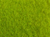 Moqueta FERIAL, Verde Oliva